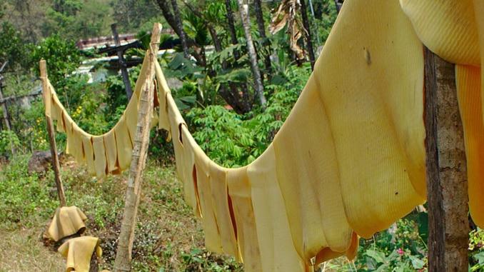 Kondome aus Naturkautschuk