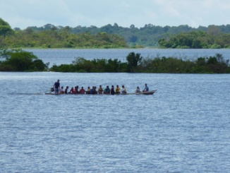 Südamerika Amazonas Fluss
