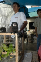 Iquitos Tierhändler