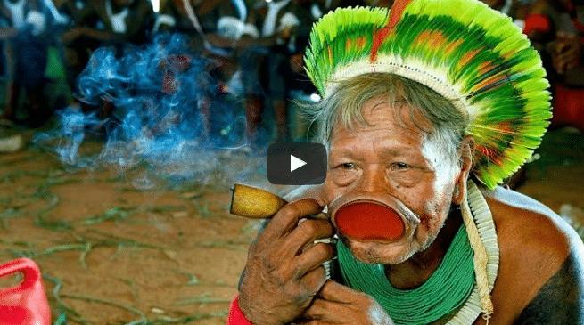 Kayapo Fotos Indianer