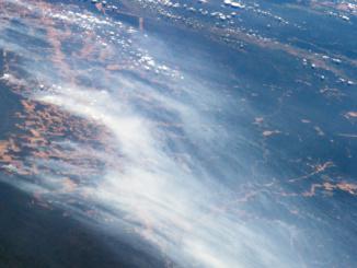 Feuer im Amazonas Regenwald