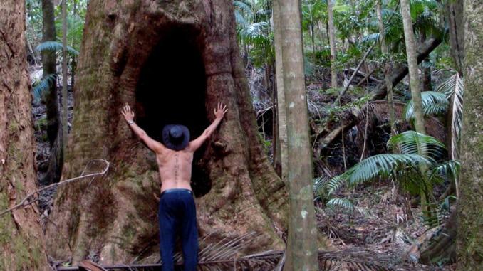 Abenteurer im Regenwald