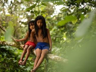 Waiapi Indianer unterstützt von Rüdiger Nehberg