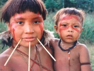Yanomami Indigenes Amazonas